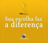 Câmara de Salgueiro apoio movimento Maio Amarelo
