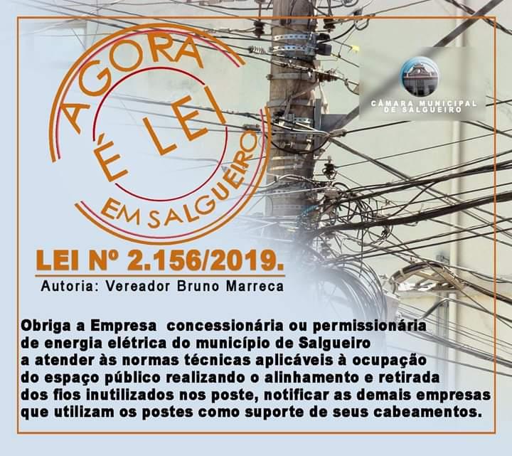 Câmara de Salgueiro aprova Projeto de Lei que obriga as empresas concessionárias ou permissionárias de distribuição de energia elétrica do Município de Salgueiro a atender às normas técnicas aplicáveis à ocupação do espaço público