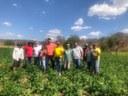 Vereador Bruno Marreca faz visita à Comunidade do Sítio Volta